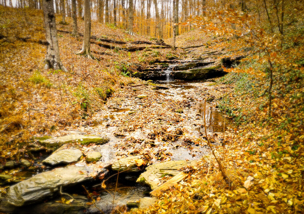 Waterfall in the fall