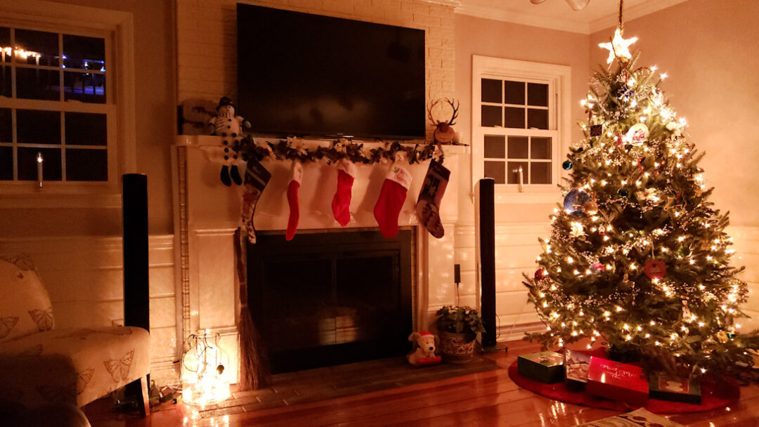 Our First Real Christmas Tree & Lights 1